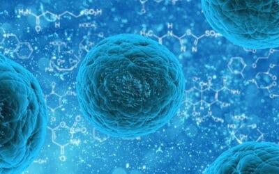 Die Coronaviren, Virus Ansteckung, Panik, Grippe